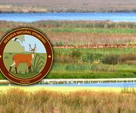 NOTICIA RELACIONADA: Detienen a cuatro personas que estaban cazando en la Reserva Natural Otamendi...